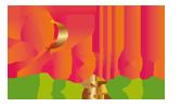 Logo agence de communication Brest : Papillon Déco & Com