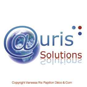 Création de logo : Entreprise stratégie numérique